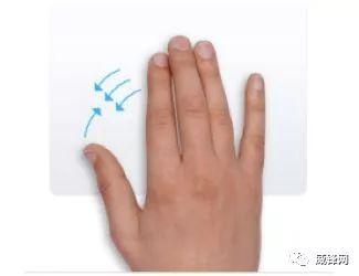 親指と薬指、中指、人差し指を寄せ