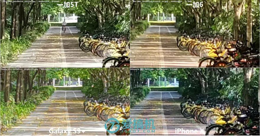昼間シーンの写真比較2