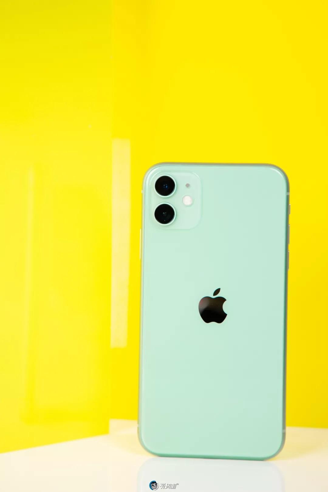 iPhone11カラー