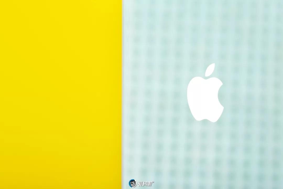 iPhone11の写真⑦